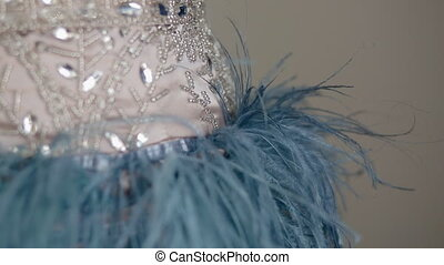 Details of luxury dress with sequins and feather