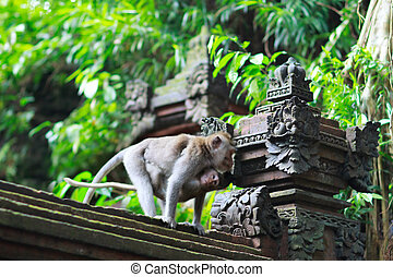 Details of temple in Ubud monkey forest - Details of temple ...