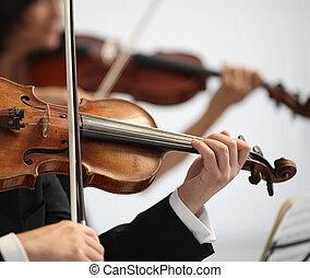 details, von, musiker, spielen, a, symphonie