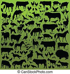 detalhado, animais, fazenda, cobrança, silhuetas, vetorial, ilustração, fundo