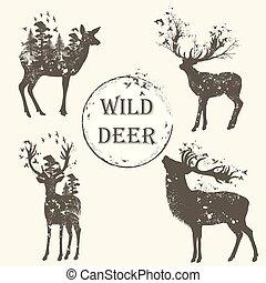 detalhado, cobrança, alto, elegante, silhuetas, vetorial, floresta, animal