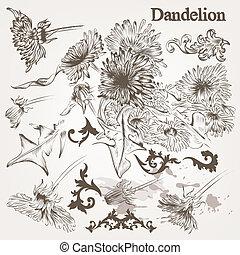 detalhado, estilo, jogo, dandelion, vindima, mão, vetorial, desenhado, flores