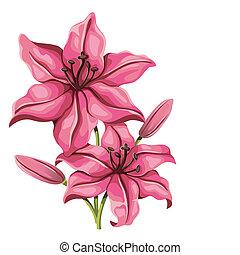 detalhado, lírio, flor, em, vindima, style., vetorial
