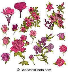 detalhado, mão, desenhado, flores, -, para, scrapbook, e,...