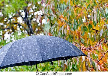detalhe, de, guarda-chuva preto, chuva