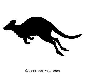 detaljerad, känguru, hoppning, isolerat, illustration