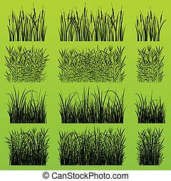 detaljerad, planterar, illustration, gräs, silhouettes, vass...
