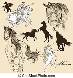 detallado, caballo, vector, colección
