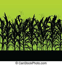 detallado, campo, maíz, ilustración, campo, vector, plano de...
