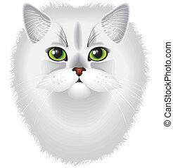 detallado, retrato, persa, vector, gato