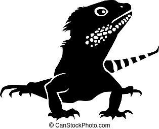 detallado, vector, iguana
