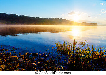 detalle, de, pasto o césped, halm, en, un, lago, en, mágico, tiempo matutino, con, amanecer, sun.