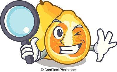 Detective ugli in the mascot fruit basket illustration...