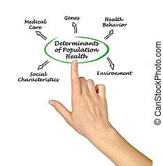 determinants, santé, population