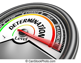 Determination level conceptual meter indicate maximum