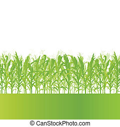 dettagliato, ecologia, campagna, granaglie, illustrazione, campo, vettore, fondo, paesaggio