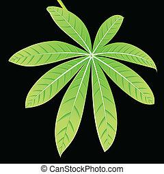 dettagliato, estratto verde, foglia