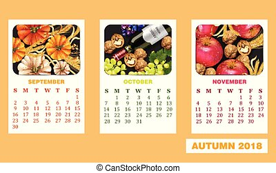 dettagliato, mela, zucca, autunno, realistico, vettore, disegno, vino, calendario, bottiglia, walnuts., 3d