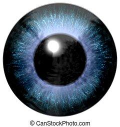dettaglio, di, occhio, con, blu, colorato, iride, e, nero, pupilla