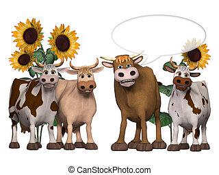 detto, interessante, und, qualcosa, toro, mucche