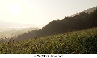 deutsch, natur, (swabian, alb), in, der, morgen, mit, berge