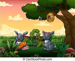 deux, dessin animé, lapins, parc