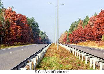 deux, forêt, autoroute, partie, côtés, automne