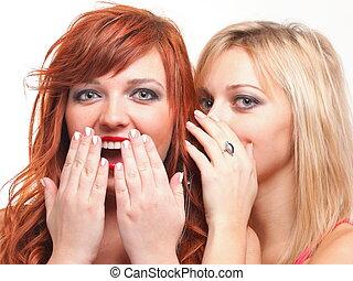 deux, heureux, jeune, petites amies, blonds, et, gingembre, conversation, fond blanc, -, société, commérage, rumeur, rumeur