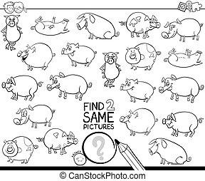 deux, trouver, même, coloration, cochon, caractères, livre