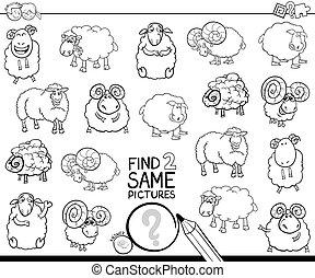 deux, trouver, mouton, même, coloration, caractères, livre