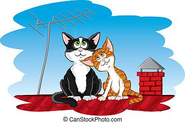 devítiocasá kočka, dále, ta, střecha