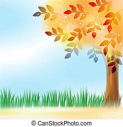 devant, ciel, feuilles, arbre, jaune
