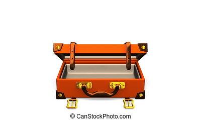 devant, classique, bagage