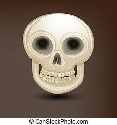devant, crâne humain, vue