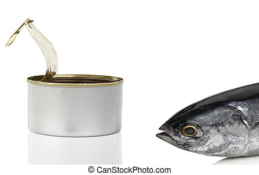 devant, fish, boîte, thon