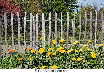 devant, fleurs, barrière