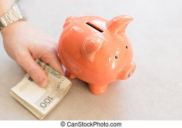 devant, polonais, main, homme argent, argent, projection, porcin, grand, lot, montre, poland., riche, bank.