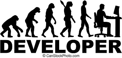 Developer evolution