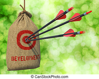 Development - Arrows Hit in Red Target.