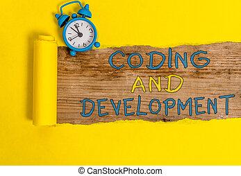 development., coderen, gebouw, programmering, eenvoudig, vergadering, programs., foto, het tonen, schrijvende , showcasing, zakelijk, aantekening