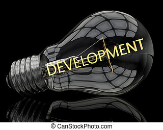 Development - lightbulb on black background with text in it...