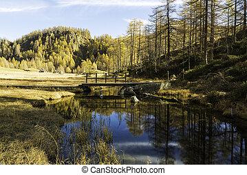 Devero Alp, reflections in the river in autumn season