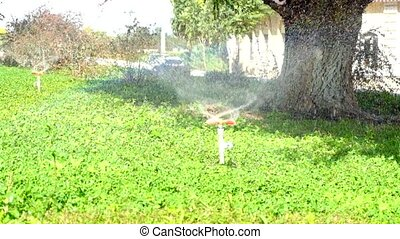 Device of irrigation garden. Irrigation system - technique of watering in the garden. Lawn sprinkler spraying water over green grass.