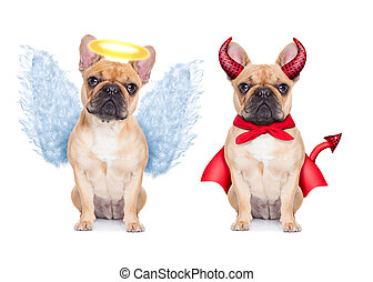 Devil and Angel fawn french bulldog dogs sitting side by...