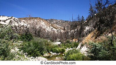 Devil's Canyon Stream 2