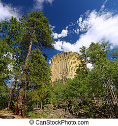 Devils Tower National Monument rises above the forests of...