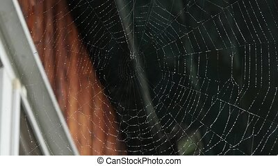 Dew on a spider web on the window of a wooden house