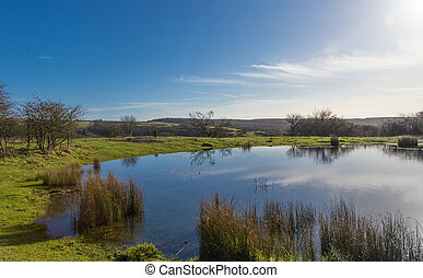 Dew Pond on the South Downs