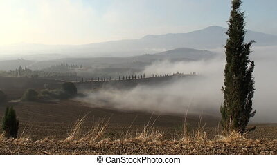 Dew coming in as the sun rises over the Tuscan Val d'Orcia