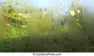 dewy bus window background